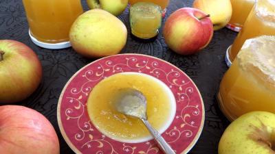 Cuisson à l'autocuiseur : Coupelle de confiture de pommes à la rhubarbe façon compote