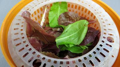 Salade d'été aux abricots - 1.1