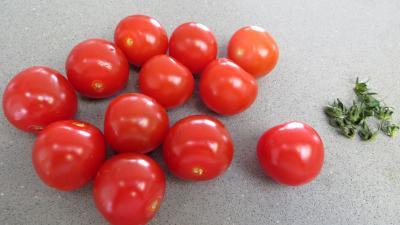 Salade d'été aux abricots - 2.1