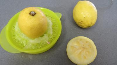 Confiture de restes de sangria aux prunes - 2.2