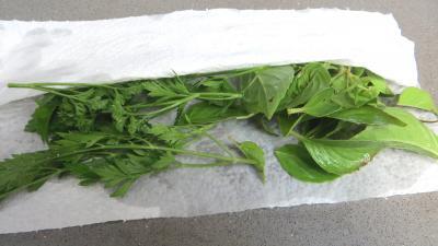 Salade de courgette - 1.1