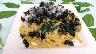 Tagliatelle fraîche : Assiette de tagliatelles sautées aux épinards