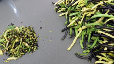 Stérilisation des haricots verts - 2.3