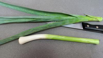Conserves de légumes d'été (poivrons, poireaux, brocolis, épinards) - 2.2