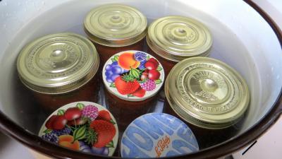 Sauce tomates aux oeufs (conserves) - 10.1