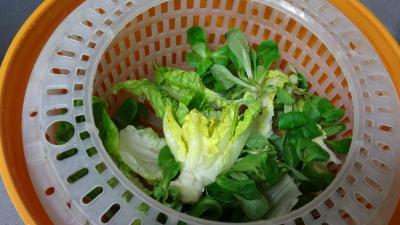 Salade de châtaignes - 4.2