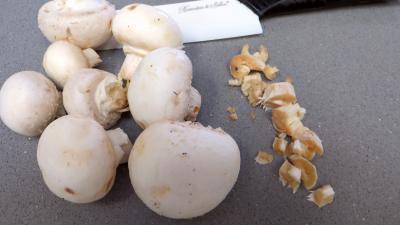Tagliatelles fraîches aux fèves - 1.3