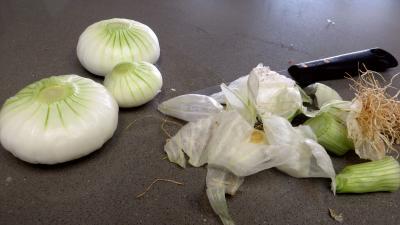 Fèves et légumes à l'oseille - 1.3