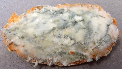 Crème de fèves - 5.3