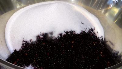 Confiture de baies de sureau à la rhubarbe - 2.1