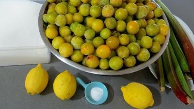 Ingrédients pour la recette : Compote de mirabelles à la rhubarbe