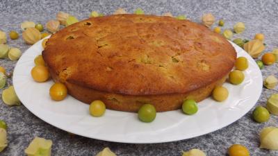 gâteau fruits : Gâteau aux physalis