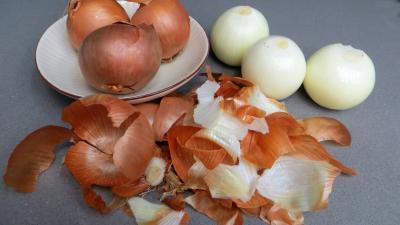 Oignons farcis - 1.1