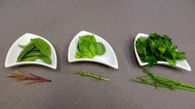 Poêlée d'asperges et fèves - 2.4