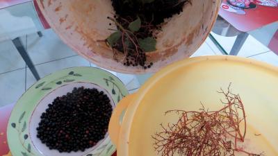 Confiture de baies de sureau au citron - 1.2