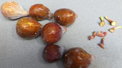 Compote aux pommes et figues - 1.3