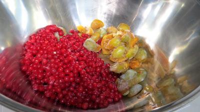 Confiture de pastèque et de fruits congelés - 1.1