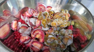 Confiture de pastèque et de fruits congelés - 1.3