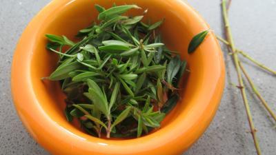Bouillon aux sept légumes - 4.1