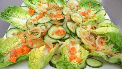Concombre et sa salade de bœuf - 4.2