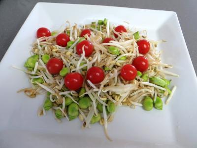 Salade en sauce verte - 3.1