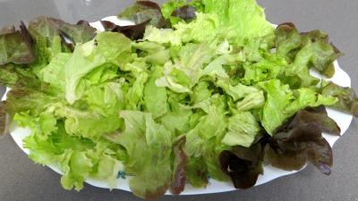 Fèves en salade aux gésiers confits - 5.1