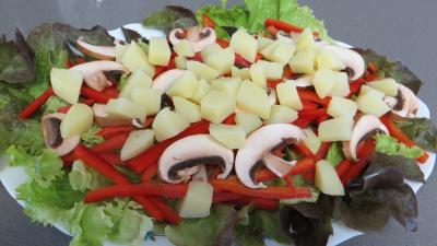 Fèves en salade aux gésiers confits - 5.3