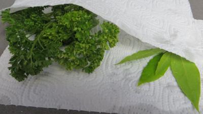 Velouté de brocolis - 1.3