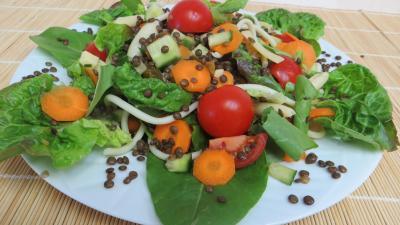 Plat de lentilles en salade