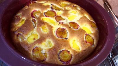 Gâteau aux nectarines - 4.2