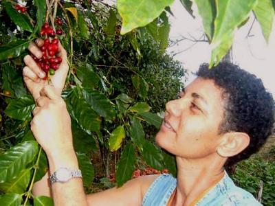 Photo : Michelle ramassant les grains de café