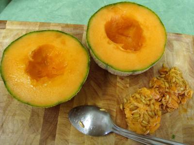 Chair du melon