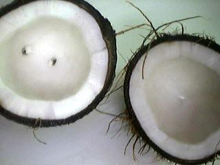 rinçons la noix de coco