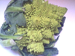 Photo : Chou Romanesco