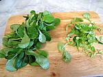 Sauce verte pour poisson - 1.4