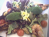 Recette Salade tiède de moules aux primevères
