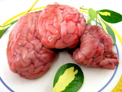 Photo : Vue de cervelles entières