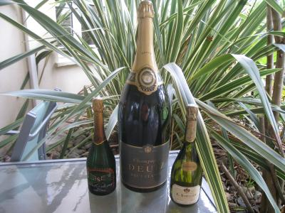 Photo : Bouteille de champagne mahulasem