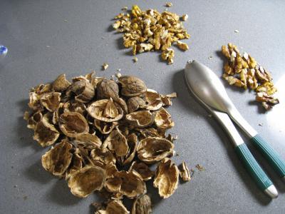 Noix de Saint-Jacques au cidre et aux noix - 5.1