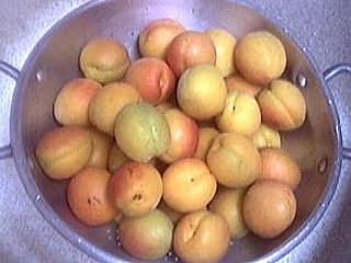 Abricots à l'eau de vie - 1.3