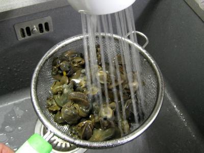 Escargots à l'anis et aux amandes - 3.1