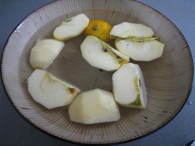 Aiguillettes de canard gras au coulis de pommes - 2.3