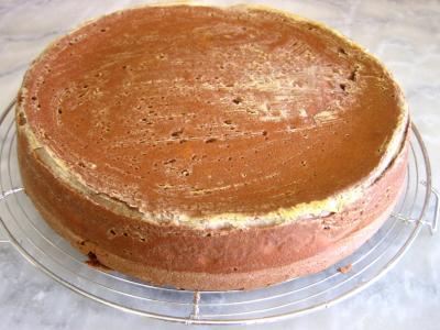 Gâteau au chocolat et son coulis de melon et pêches - 10.3