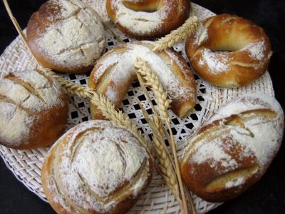 Recette Petits pains à l'épeautre