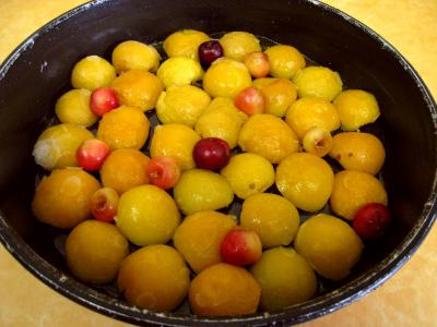 Quatre-quarts aux abricots et aux cerises - 5.3