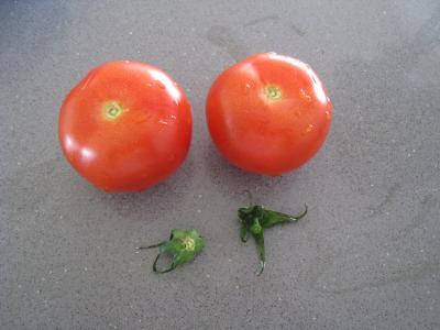 Salade d'asperges et crudités - 4.4