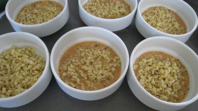 Blé gratiné aux tomates et à la Mozzarella - 14.1