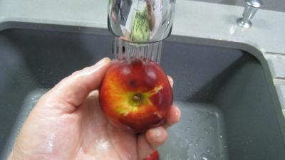 Blanquette aux pommes et aux fruits - 3.3