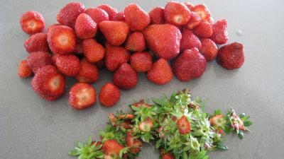 Sorbet aux fraises - 1.3