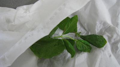 blé en cassolettes aux courgettes - 2.2